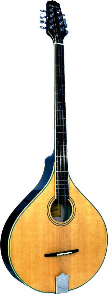 Ashbury AM-375 Irish Bouzouki, Flat Top Solid spruce top, solid maple body. Oval hole, gloss natural finish.
