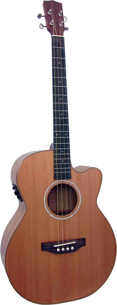 Ashbury Lindisfarne Tenor Guitar Solid cedar top, Solid koa back and sides. Cutaway with Fishman pick-up