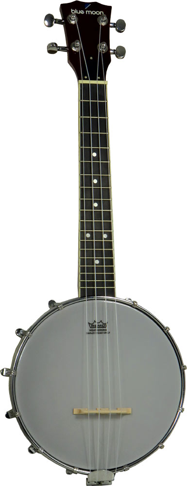 Ashbury Ukulele Banjo, 8inch Head 8inch Remo head with a closed back style body