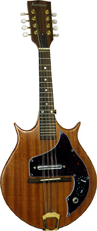 Ashbury AM-240 Solid Body Electric Mandolin Double cutaway style body with single coil pick-up