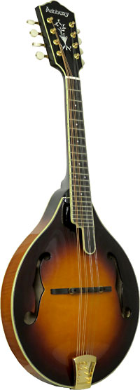 Ashbury AM-510 A Style Bluegrass Mandolin Solid carved AA spruce top, solid curly maple back and sides. Ivoroid binding