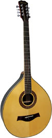 Ashbury AM-450 Irish Bouzouki - guitar bridge