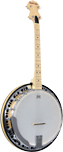 Ashbury AB-65 Tenor Banjo, 17 Fret, Maple Rim