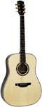 Ashbury AG-380 Dreadnought Guitar, All Solid