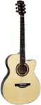 Ashbury AG-160 000 Acoustic Guitar, Electro